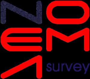 Noema-logo_quadrato_survey_1