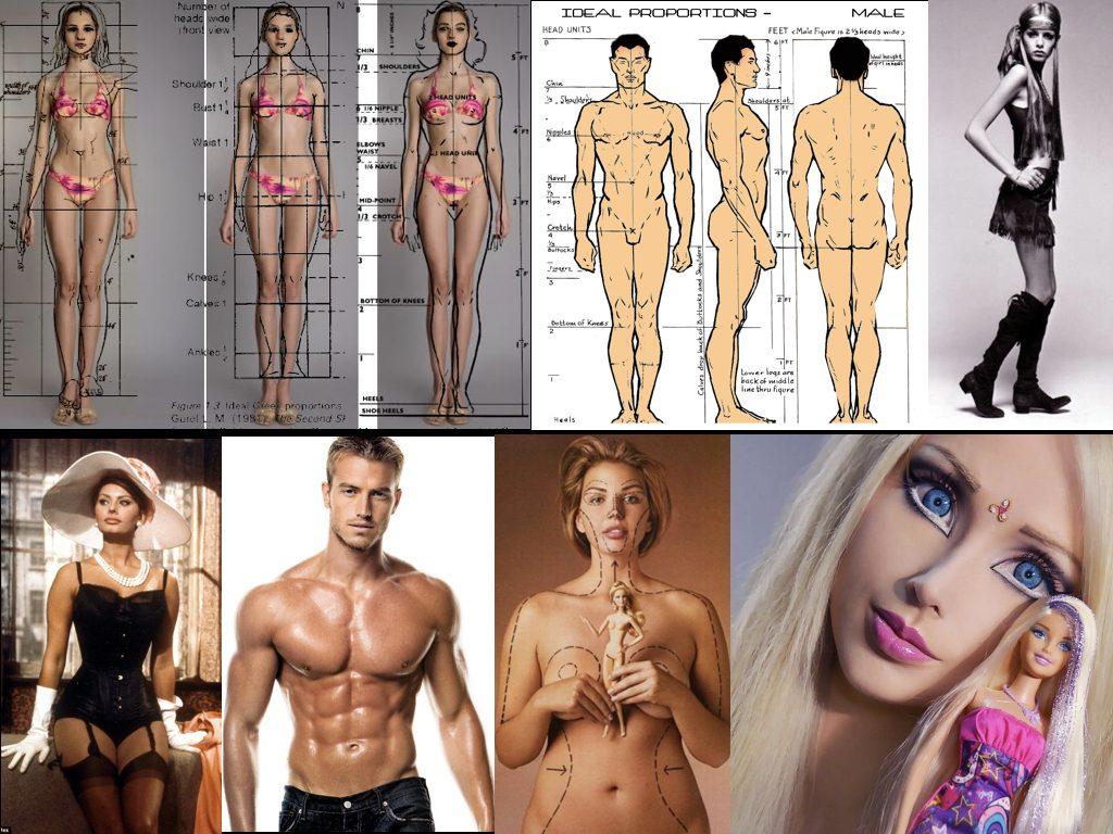 human_body_2